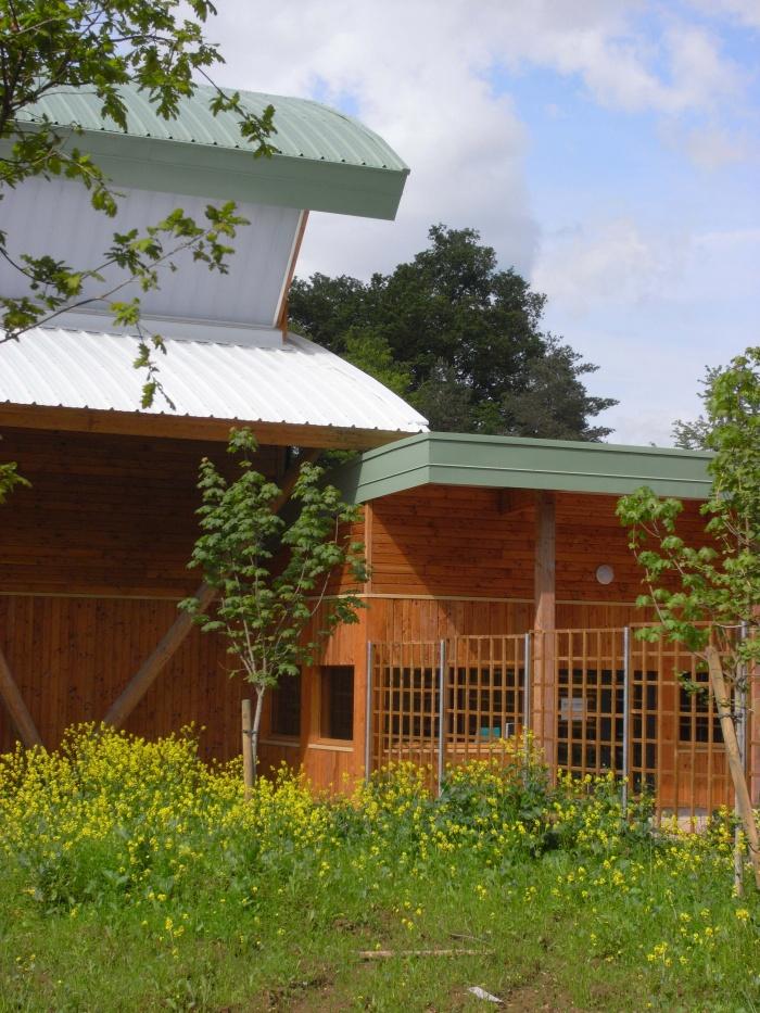 Gymnase pour le Lycée en Forêt : entrée