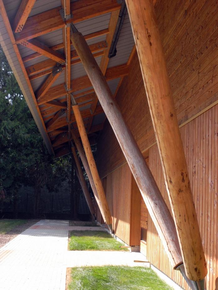 Gymnase pour le Lycée en Forêt : Auvent de la salle