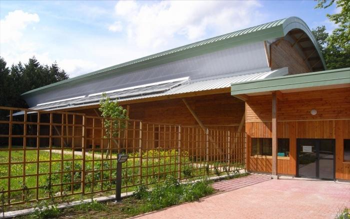 Construction d'une salle de gymnase au lycée en forêt à Montargis (45)