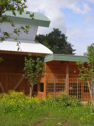 Construction d'une salle de gymnase au lycée en forêt à Montargis (45) : image_projet_30646